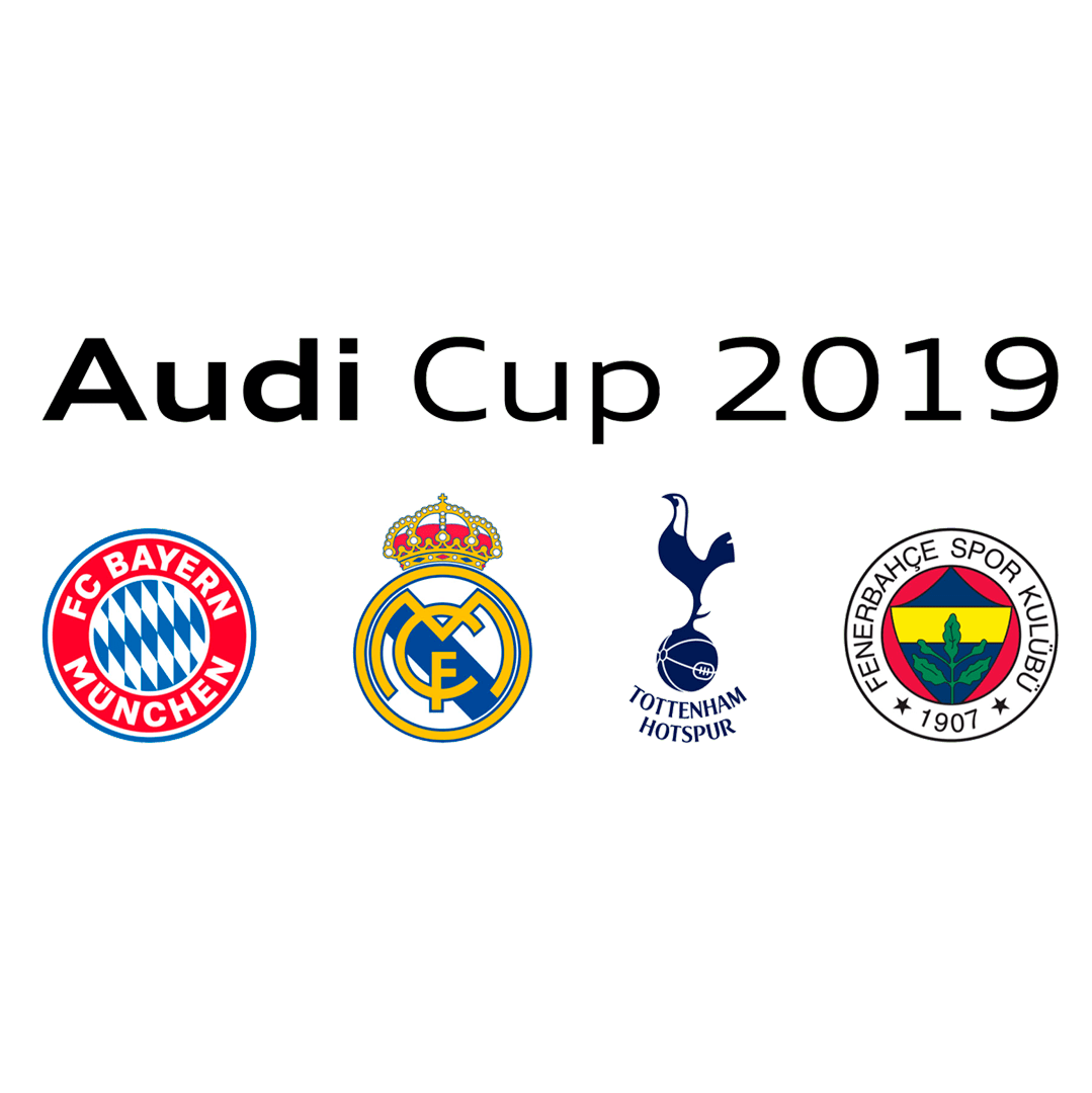 audicup2019